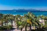 Alpes-Maritimes (06) Cannes