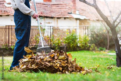 Leinwanddruck Bild Man collecting fallen autumn leaves in the yard