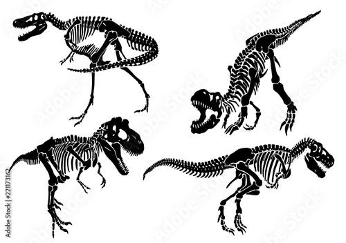 Fototapeta Graphical set of dinosaur skeletons isolated on white background,vector sketch