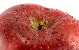 Red apple close-up