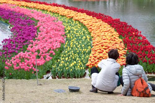 Spring - 221199545