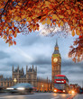 Buses with autumn leaves against Big Ben in London, England, UK - 221206582