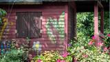 Różowy domek na drzewie