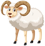 A whie male horn sheep on white background - 221239159