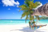 Hängematte am tropischen Strand - 221266385