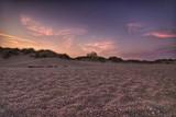 la plage - 221269518