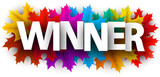 Autumn winner banner with colorful maple leaves. - 221280593