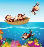 Happy monkey at the sea - 221314903