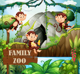 Monkey family in nature zoo - 221315701