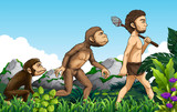 Human evolution in nature background - 221316794