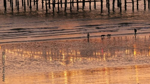Reflections of the lights of Brighton pier and the setting sun on the wet sand at low tide. The silhouettes of people cab be seen enjoying the beach.