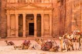 Camels resting near the ancient temple in Petra, Jordan - 221324945