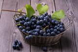 natura morta con uva nera in un vecchio cestino di metallo
