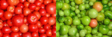 Red and green tomato texture. Fresh juicy red tomatoes