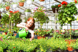 Woman working in a nursery - Greenhouse with colourful flowers - 221342161