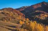 Landscapes of Autumn Carpathian Mountains
