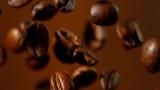 Super slow motion of falling coffee beans. Filmed on high speed cinema camera, 1000 fps. - 221363957