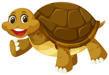 A smiley turtle on white background