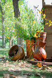 Autumn still life of flowers, jug and pot with cones on the street. - 221373953