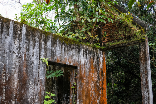 Abandoned stone buiding, house overgrown with jungle