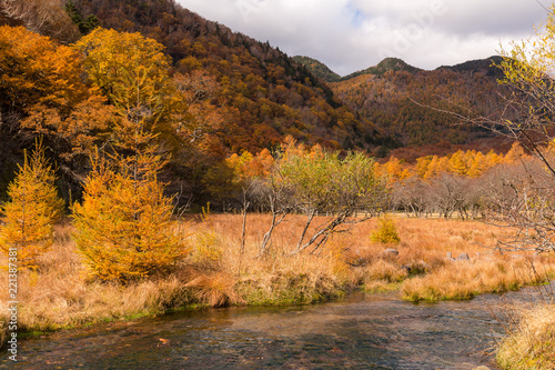 Beautiful autumn landscape in nikko of Japan