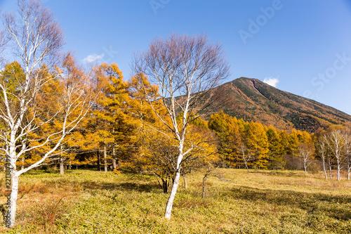 Mount Nantai in autumn season