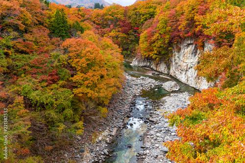 Kinugawa in autumn