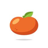 Orange fruit vector isolated - 221399592