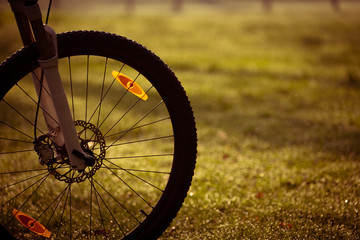 Bicycle wheel  in the autumn forest. © science photo