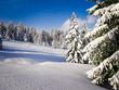 Fantastic world of crystal clear, white winter wonderland