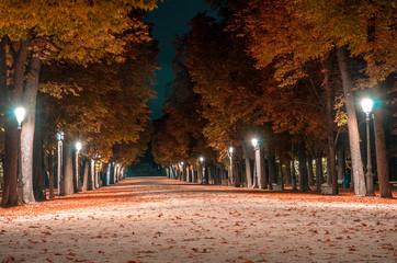 Parco Ducale di Notte (Parma)