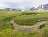 summer landscape with colorful green and orange moss meadow with hot springs and snow covered rhyolit mountains in geothermal area near road f210 in Iceland - 221471971