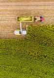 Maisernte auf Feld mit Traktor von oben - 221477906