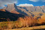 Grasses and amphitheater of the Drakensberg mountains, Royal Natal National Park, South Africa.