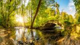 Stary most nad potokiem w lesie z jaskrawym słońcem świecącym przez drzewa