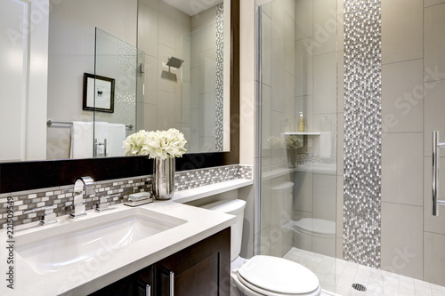 Bathroom modern interior with dark hardwood cabinets and large mirror - 221509549