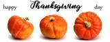 erntedankfest / thanksgiving text mit schönen kürbissen