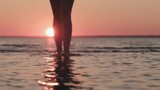 Slow motion handheld young female legs walking in shallow water on a beach at sunset - 221563721