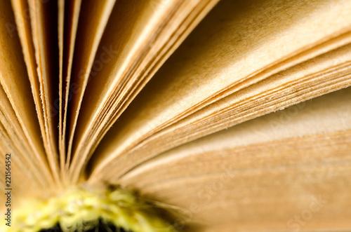 book macro - 221564542