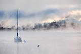 Foggy misty lake landscape in Colorado, USA - 221564706