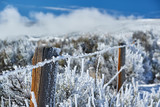 Landscape with hoarfrost on the fence - 221564717