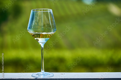 Glass of white wine and vineyards - 221565700