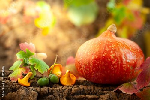 Leinwanddruck Bild Ripe pumpkin