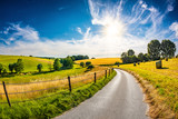 Landscape in summer with bright sun, meadows and golden cornfield in the background - 221580396