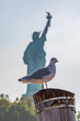 A seagull perched on a wooden post, with the Statue of Liberty behind