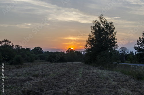 Foto Murales zachód słońca widok z drogi