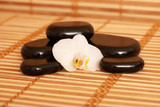 Black massage rocks decorated with flower in a dark and light bamboo background - 221613175