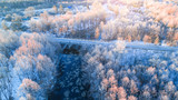 Trees with frost view from above