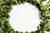 periwinkle leaves wreath on white background. green leafy foliage circle. minimalist floral decor. empty space concept - 221647347