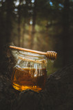 Jar of fresh honey and honey spoon on pine tree in woods.